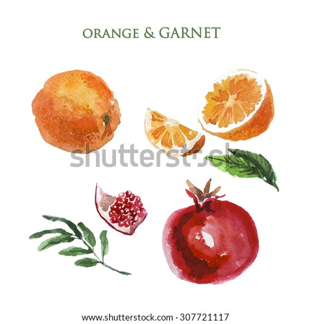 Watercolor illustration of fresh bright colored hand drawn fruits on white background. Good for recipe book illustration, magazine or journal article.  - stock photo