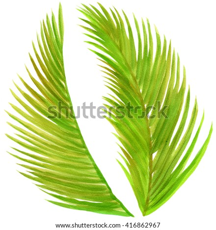 Watercolor illustration of palm leaves - stock photo