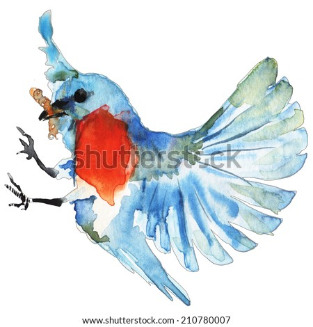 Watercolor illustration of tropical blue bird on white background - stock photo
