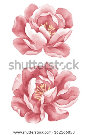 watercolor illustration purple poppies in simple background - stock photo