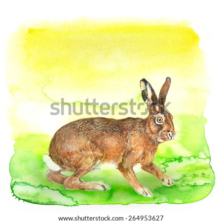 Watercolor illustration: Rabbit on light green watercolor  - stock photo
