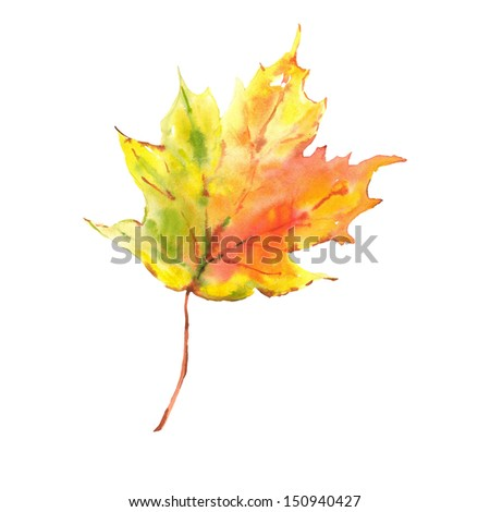 watercolor leaf isolated on white background - stock photo