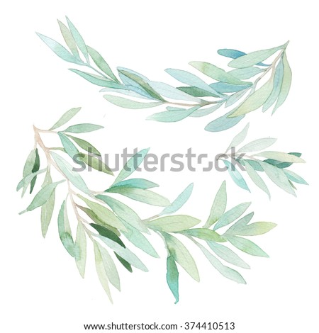 Watercolor leaves branch set. Hand painted botanical elements isolated on white background. Artistic clip art - stock photo
