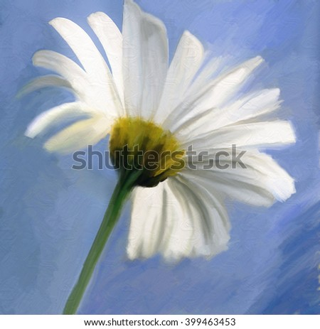 watercolor oil paint of daisy white flower over the blue sky  - stock photo