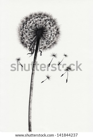 Watercolor painted image of dandelion with ray floretes flying away - stock photo