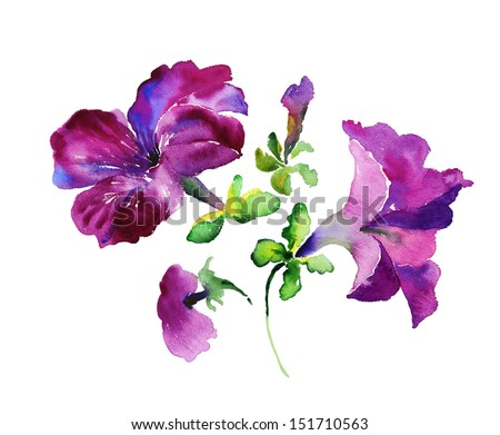 Watercolor purple flowers - stock photo