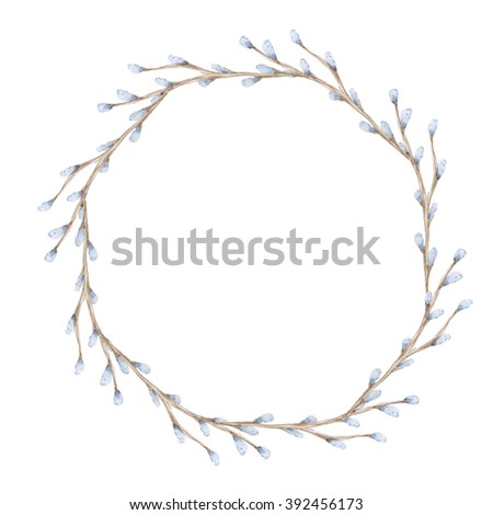Pussy Willow Branches Drawing