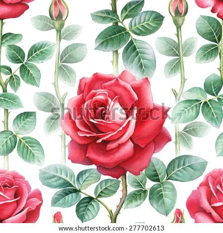 Watercolor rose flowers illustration. Seamless pattern - stock photo