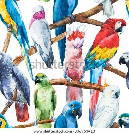watercolor seamless pattern bright parrot tropical wallpaper, bird cockatoos, African Grey, Ara, - stock photo