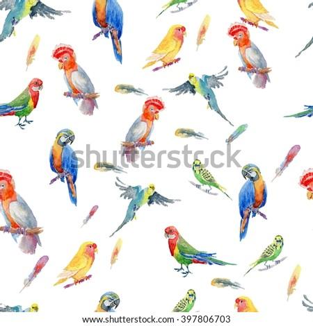 watercolor seamless pattern bright parrot tropical wallpaper, bird cockatoos, African Grey, Ara. Watercolor pattern. Seamless pattern. - stock photo