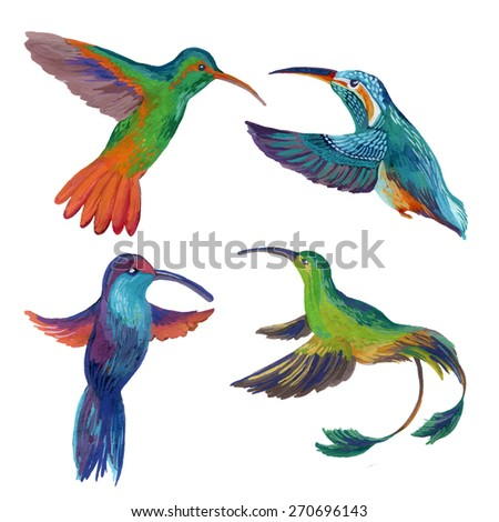 Watercolor set of four colibri. Hand painted illustration of hummingbird in flight - stock photo