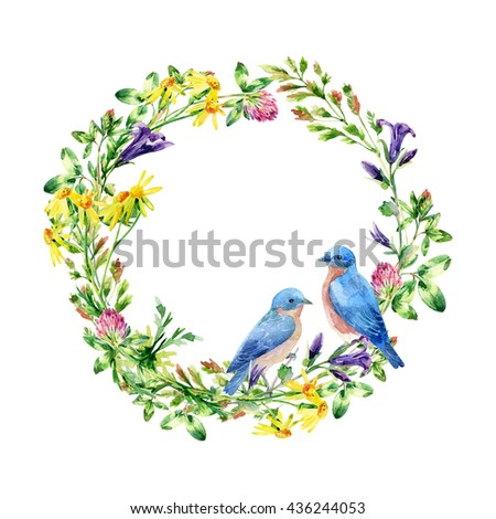 Watercolor wild flowers and small birds wreath. Bluebird couple. Bell flower, clover, daisy, weeds and meadow herbs. Watercolor wild field wreath. Hand painted floral illustration - stock photo
