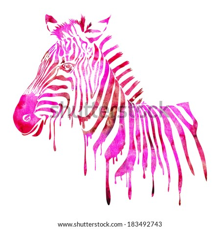 Watercolor zebra head - abstract animal illustration in pink and red colors - stock photo