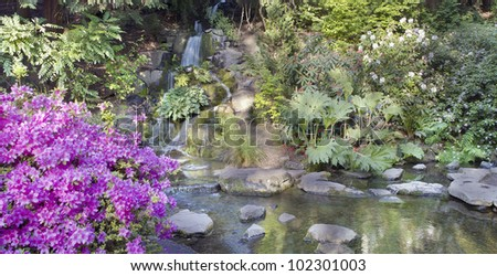 Waterfall and Creek at Crystal Springs Rhododendron Garden in Portland Oregon Panorama - stock photo