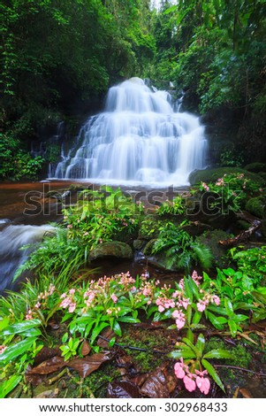 Waterfall and flower in deep forest - stock photo