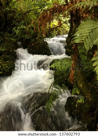 Waterfall flowing in tropical jungle - stock photo