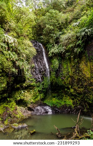 Waterfall in Amber Mountain National Park Madagascar - stock photo