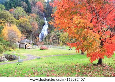 Waterfall in autumn, Name is Nanataki, Akita, Japan - stock photo