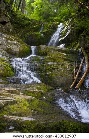 Waterfall in deep forest (Sanderson brook falls, MA) - stock photo