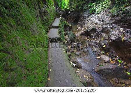 Waterfall  in deep forest  Ubud  Bali , Indonesia - stock photo