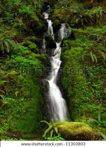 Waterfall in Lush Green Forest - stock photo