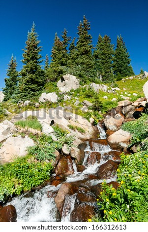 Waterfall with Colorful Summer Wildflowers in a Beautiful Colorado Landscape - stock photo