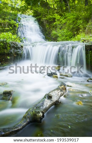Waterfall with greenery in a forest. - stock photo