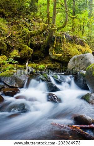 Waterfalls in the Columbia River Gorge, Oregon  - stock photo