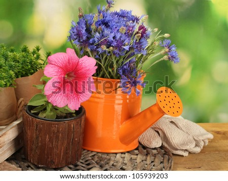 watering can and flowers on wooden table on green background - stock photo