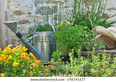 watering can and gardening basket with straw hat from aromatic herbs and flowers - stock photo