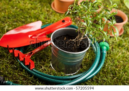 Watering Can And Gardening Tools Sitting In Grass - stock photo
