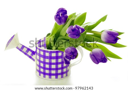 Watering can with tulips isolated - stock photo