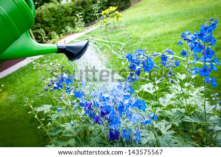 Watering flowers on garden with green watering can - stock photo