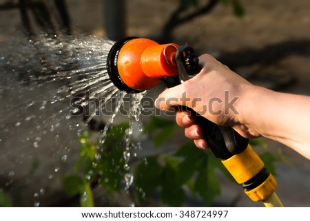 Watering garden equipment - hand holds the sprinkler hose for irrigation plants. Gardener with watering hose and sprayer water on the vegetable. - stock photo