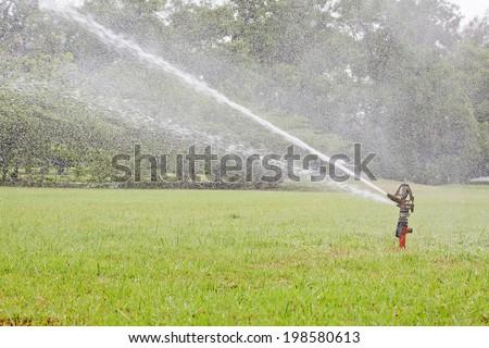 Watering garden equipment sprinkler hose for irrigation plants. - stock photo