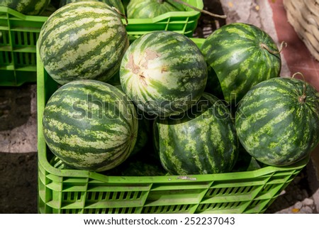 watermelon group from a marketplace in a plastic box - stock photo
