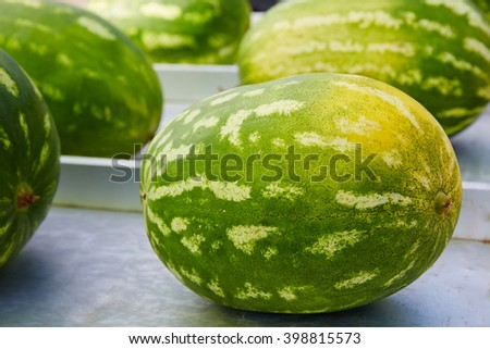 Watermelons in a marketplace in a row at Spain - stock photo
