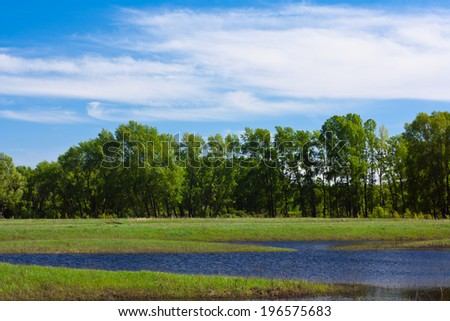 waves on water of lake and green trees on sky background - stock photo