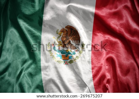 waving and shining mexican flag - stock photo
