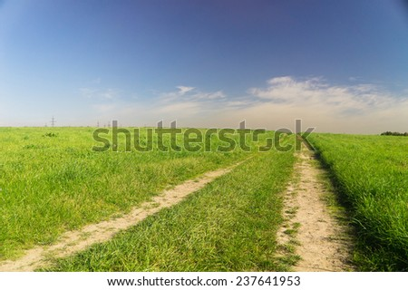 Way Ahead Fields of Sunlight  - stock photo