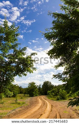 Way ahead of the gravel road between the leaves of the tree. - stock photo