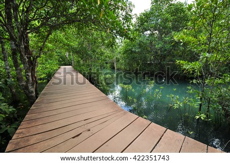 Way on Emerald Pool - stock photo