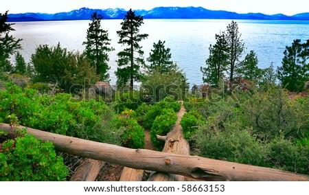 way to the lake - stock photo