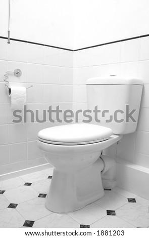 WC pan detail in white - stock photo