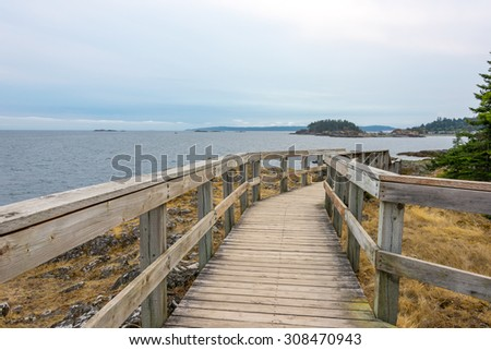 Weathered boardwalk on the west coast of Canada - stock photo