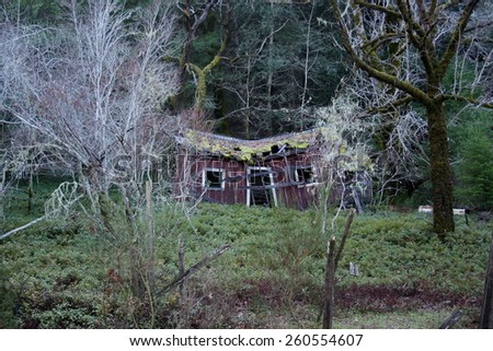 Weathered old shack with a caved in roof, in rural Napa Valley California, appearing like a haunted house. - stock photo