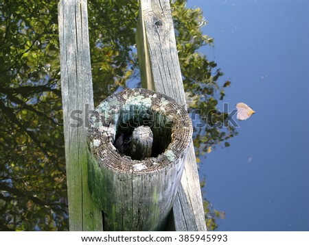 Weathered, old wooden column that supports a footbridge. - stock photo