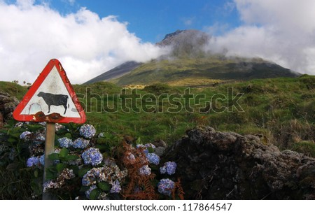 Weathered sign in front of volcano Pico - Pico island, Azores Islands - stock photo