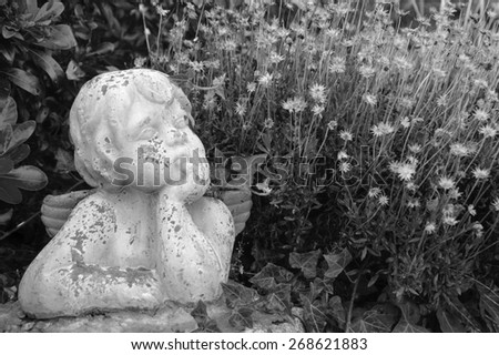 Weathered statue of an infant angel in overgrown garden. Aged monochrome photo. Black and white. - stock photo