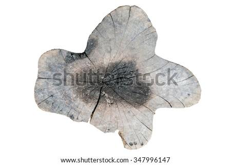 weathered wood stump, isolated on white background - stock photo